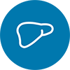 Liver Icon - interventional oncology